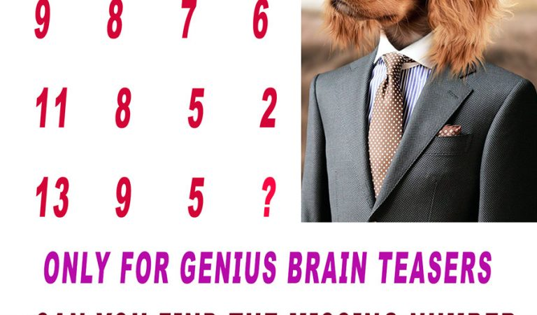 Brain Teasers Only For Genius